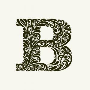 Fig. B. B côté face.