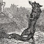 N'avoir jamais vu péter le loup sur la pierre de bois [navwar Zamè vy pété le lu syr la pjèr de bwa]