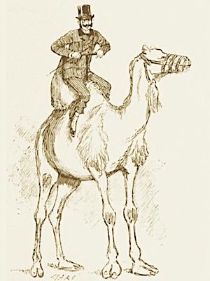 Rejeter le moucheron et avaler le chameau [reZeté le muSrô é avalé le Samo]